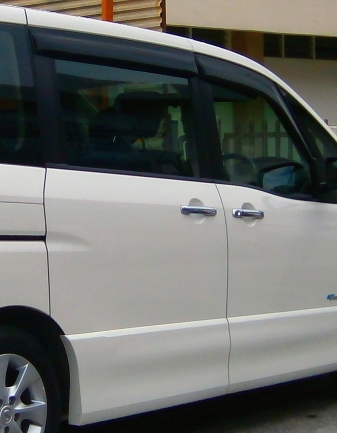 "<span style=""font-weight: bold;"">Дверь Nissan Serena C25</span>"